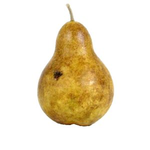 Antique Bosc Pear (pera d'epoca bosc) image