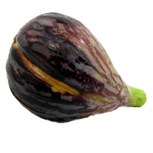 Curved Black Purple Fig (fico curvo viola nero) image