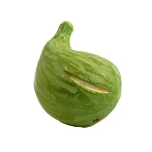 Curved Green Fig (fico verde curvo) image