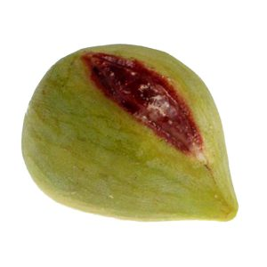 Large Green Fig with Red Slit (fico verde con fessura rossa) image