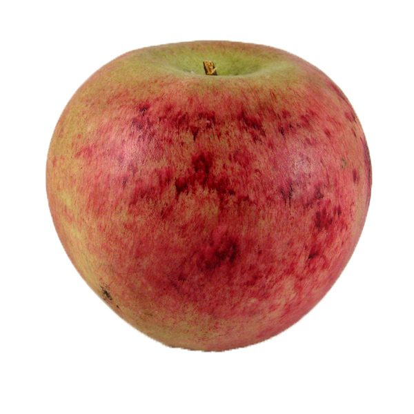 Macintosh Apple (mela macintosh) image