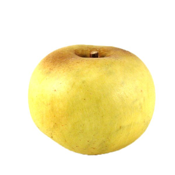 Yellow Apple (mela giallo) image