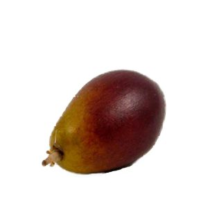 Mixed Color Olive (colore misto oliva) image
